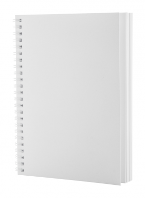 Verslo dovanos Polax (anti-bacterial notebook)