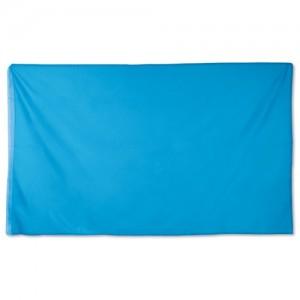 Plokščia spalvota vėliava