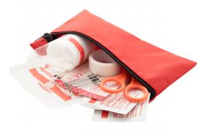 Verslo dovanos Doc2Go (first aid kit)