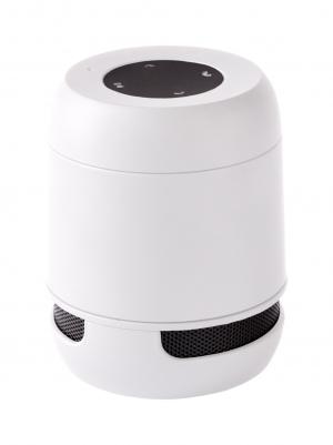 Bluetooth garsiakalbis Braiss