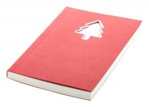 Verslo dovanos Vaides (notebook)