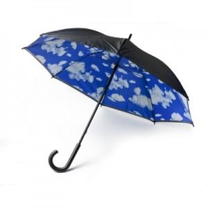 Rankinis skėtis