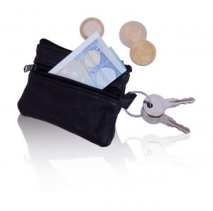 Verslo dovanos Trizip (purse)