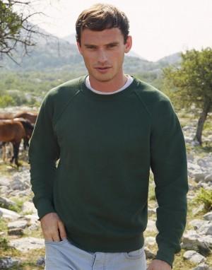 Vyriškas klasikinis džemperis su reglano rankovėmis