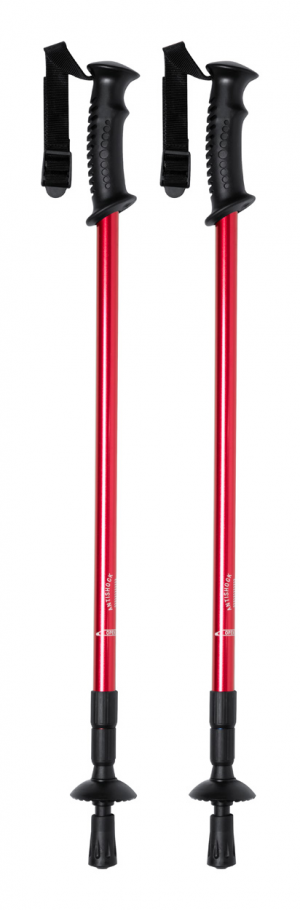 Verslo dovanos Brulen (nordic walking sticks)