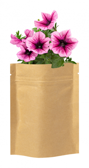 Verslo dovanos Sober (flower planting kit)