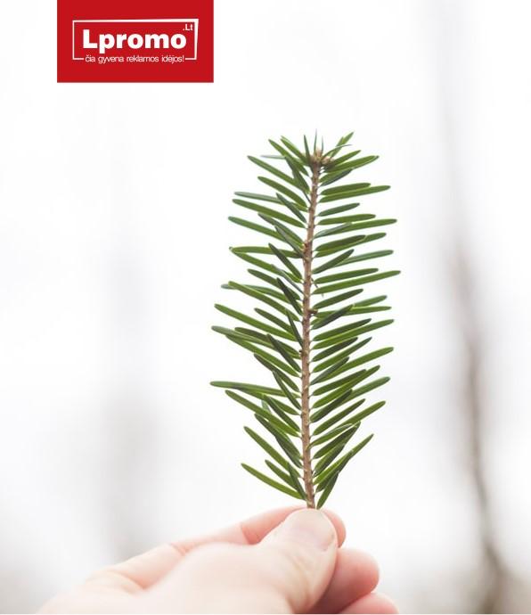 Ekologiškos verslo dovanos